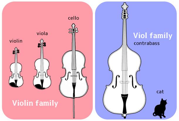メンバー楽器紹介⑩ コントラバス筆頭木野どど松 音楽と絵と物語が