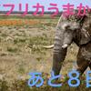 Thumb fe62560b761402935fc950447ea7fad40ab9b684