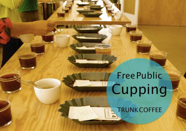 trunk cupping