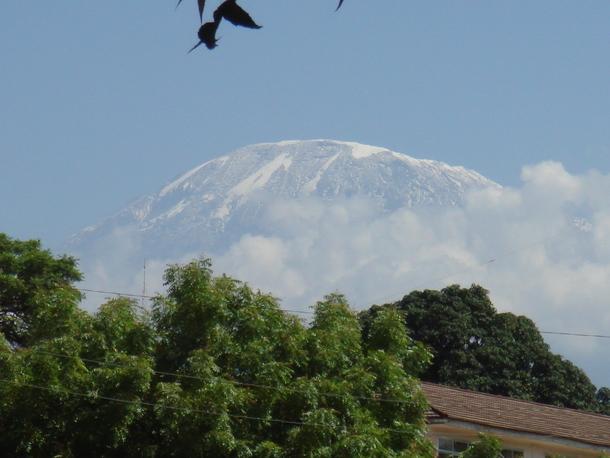 2、3月に実施した現地調査時に姿を見せたキリマンジャロ山