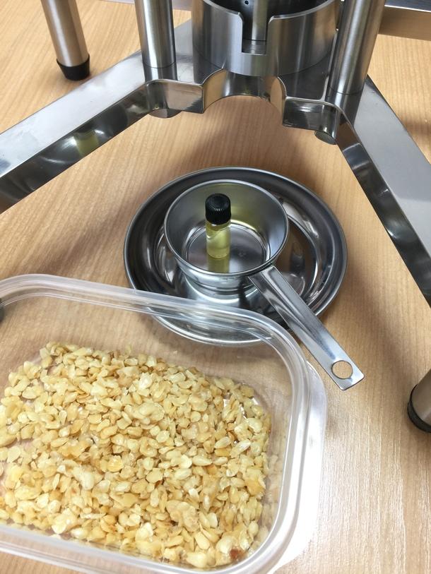 サクランボ種子油