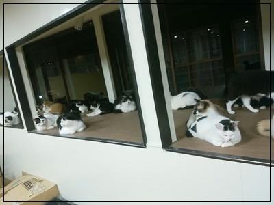 特等席の出窓です