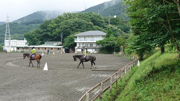 スポーツ少年団の乗馬レッスン