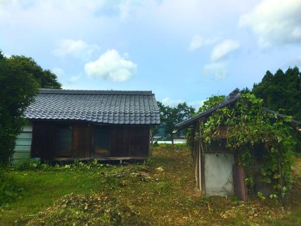 今回改修する空き家(2017年8月末撮影)