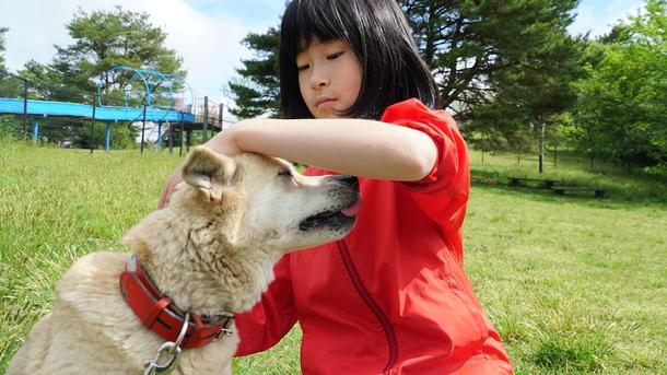 保護犬とりあんちゃん