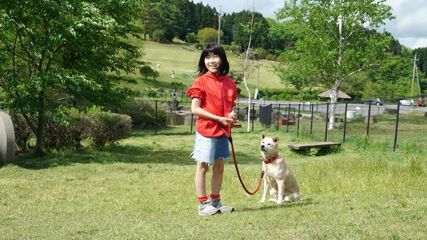 保護犬と触れ合うりあんちゃん