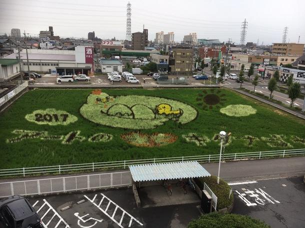 北名古屋 田んぼアート2017
