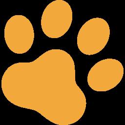 長野で地域猫の室内飼いを普及する 保護猫カフェ をopenしたい 村山 豊子 18 05 14 公開 クラウドファンディング Readyfor レディーフォー