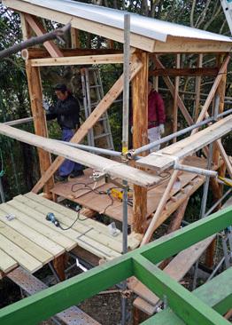 ツリーハウス建設3