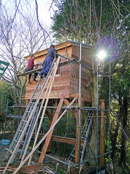 ツリーハウス建設