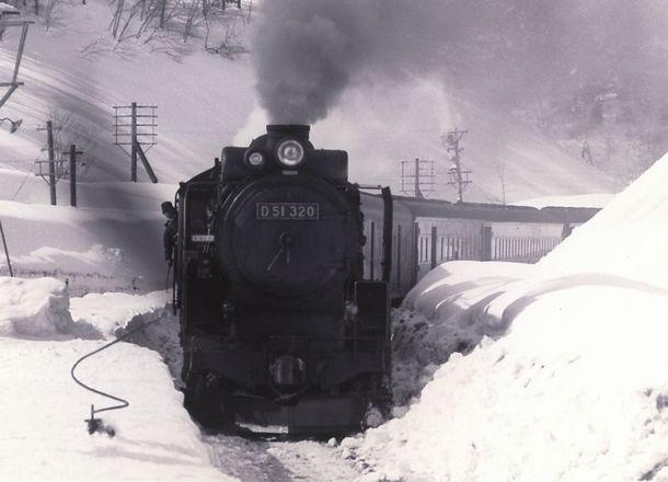 D51320現役当時の写真