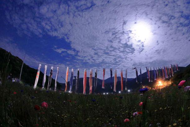 夜の松崎花畑