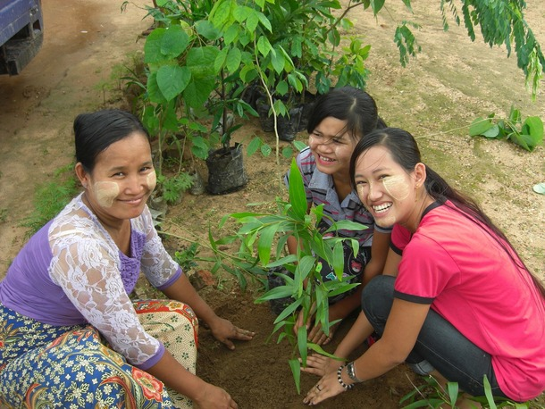 plantingstaff
