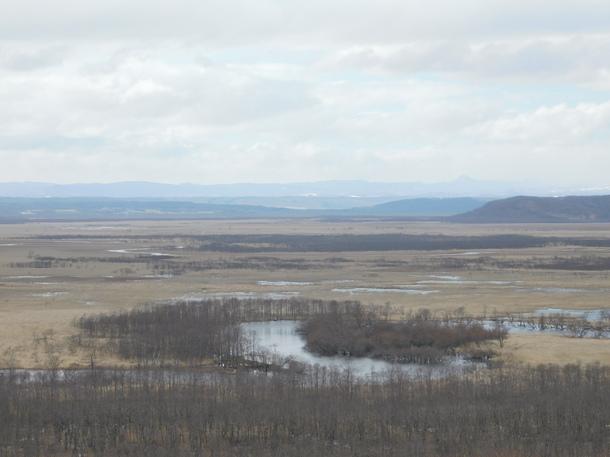早春の釧路湿原