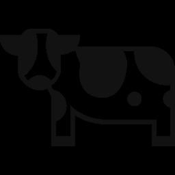 酪農家の個性が生きる おいしいクラフトバターを届けたい 山川 将弘 18 11 16 公開 クラウドファンディング Readyfor レディーフォー