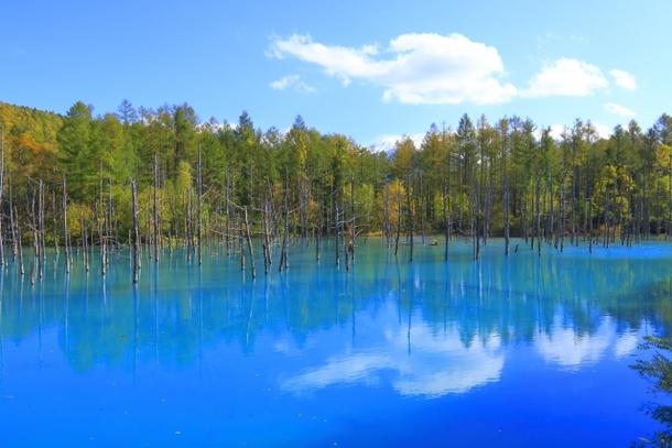 北海道の秋の風景写真
