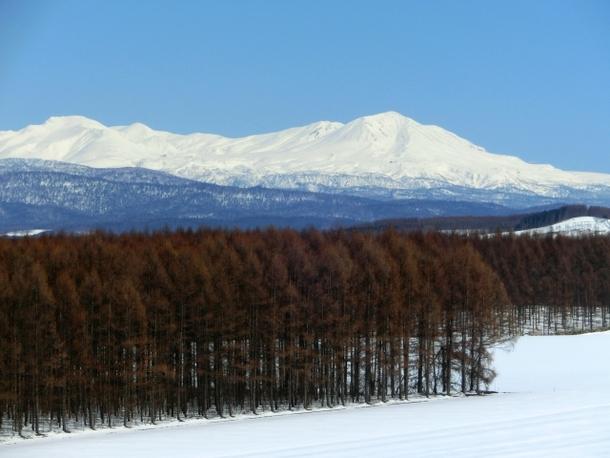 北海道の冬の風景写真