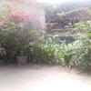 Thumb 21b9377bc6495c1c09345d01e9c9e91e6ac2ccc1