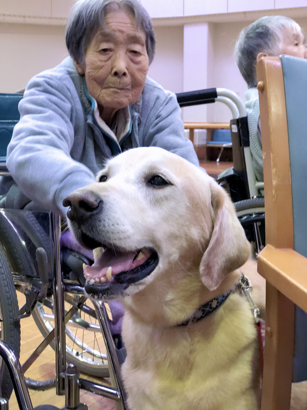 高齢者施設での活動