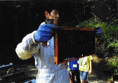 ミツバチの説明をしている瀬川さん
