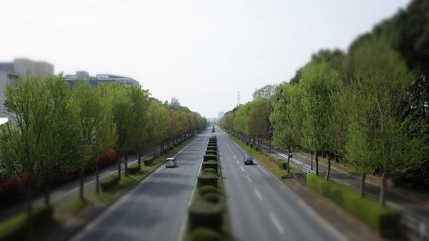 筑波技術大学天久保キャンパス横の東大通りの写真