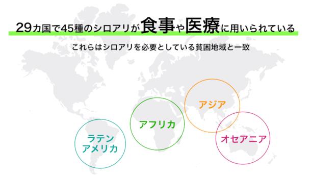 世界各国のシロアリ食文化