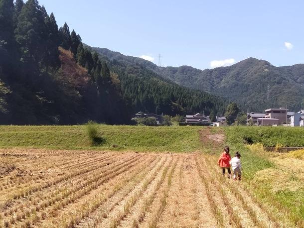 稲刈りが終わった田んぼで遊ぶ我が子(笑)