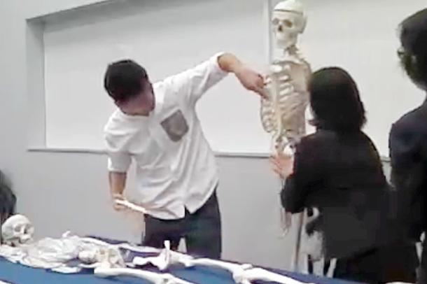 骨格模型の組立の様子