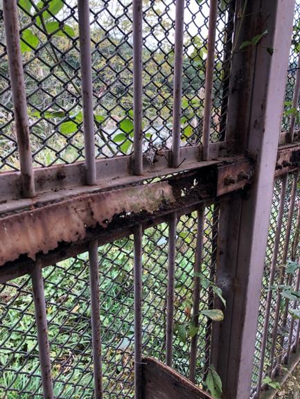 盛岡市動物公園フェンス