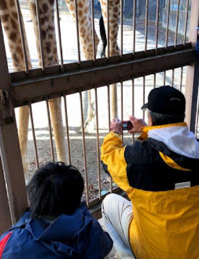 盛岡市動物公園リンタ