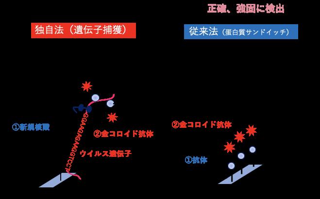 大阪 抗体 検査 コロナ
