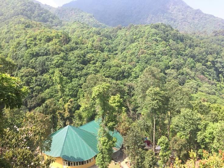 森の中にあるOshoタポバン瞑想センター