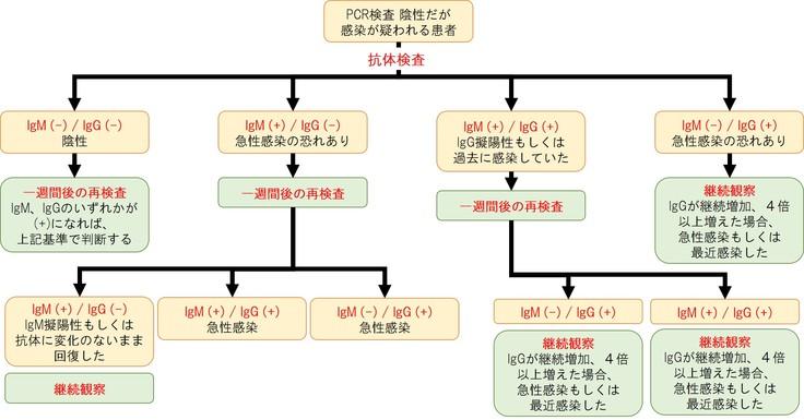 中国での抗体検査の使用方法