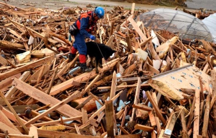 九州北部豪雨でのクヴィックとの捜索