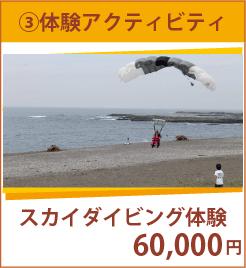 ¥60,000 スカイダイビング体験
