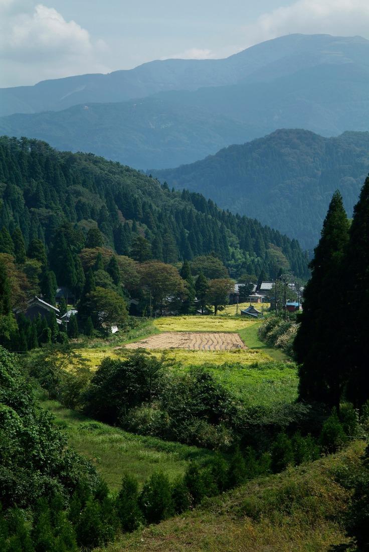 池田町の自然(提供:いけだ農村観光協会)