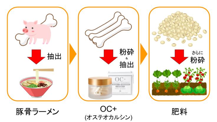 健康,サプリメント,オステオカルシン研究所,OC+,クラウドファンディング