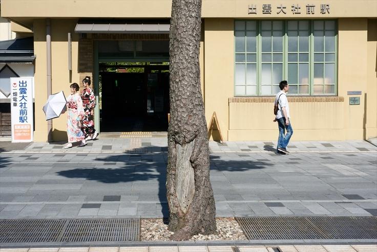出雲大社前、神門通りに残された松根油採取跡