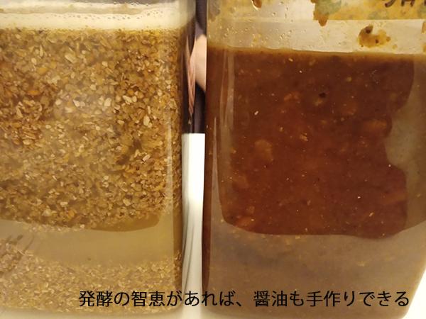 日本の発酵の智恵は素晴らしい!