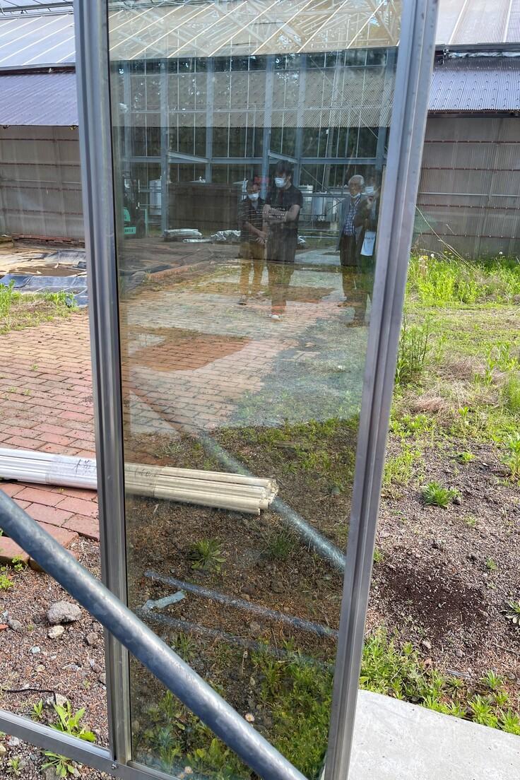 温室強化ガラス 最初の1枚