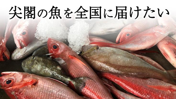 尖閣の魚を全国に届けたい