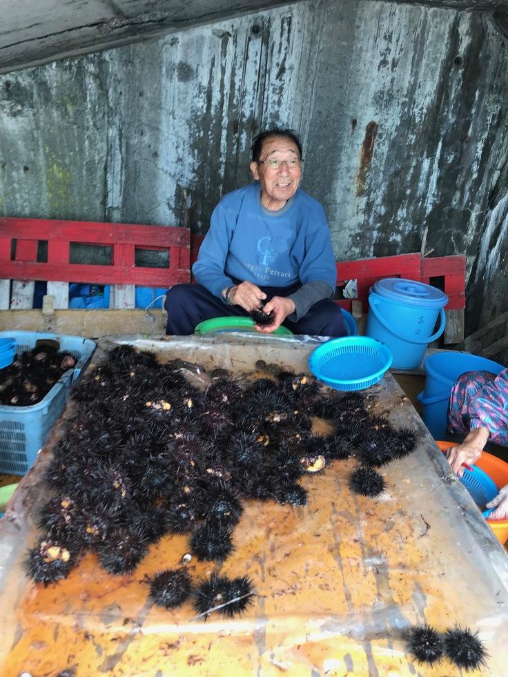 現役漁師95歳ウニ漁殻剥きの様子