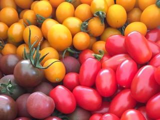 山元町産イタリアンミニトマトジュースのギフトセットを作りたい