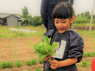 子供達が育てた野菜を子供達自身の手で販売する拠点を作りたい!