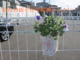 手作りのフラワーカップで仙台の街中をきれいにしたい!!