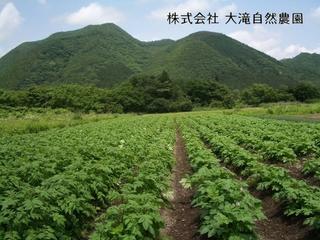 自然循環型農法をもっと多くの人に伝える施設を作りたい。