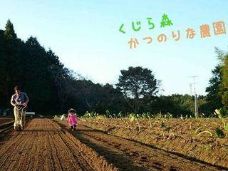 200年続く田畑を持つ「かつのりな農園」の大切なお米を守りたい!