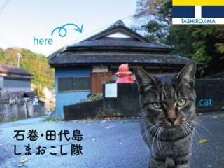 猫島・田代島に誰もが集える古民家カフェを作り、石巻復興へ!