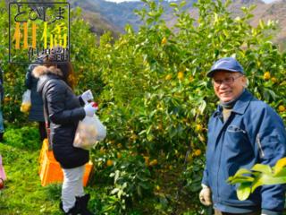 島中がレモン色に輝く日よ再び。広島に眠る耕作放棄地を再生へ!