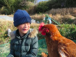 名古屋発!障がいを持つ方が安定して働ける、養鶏場を拡張したい
